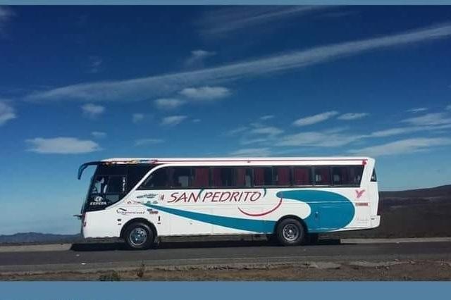Bus San Pedrito